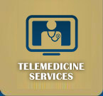 Telemedicine Appointments at Baldwin Animal Hospital