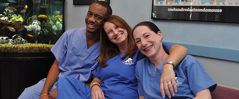 Our Veterinary technicians
