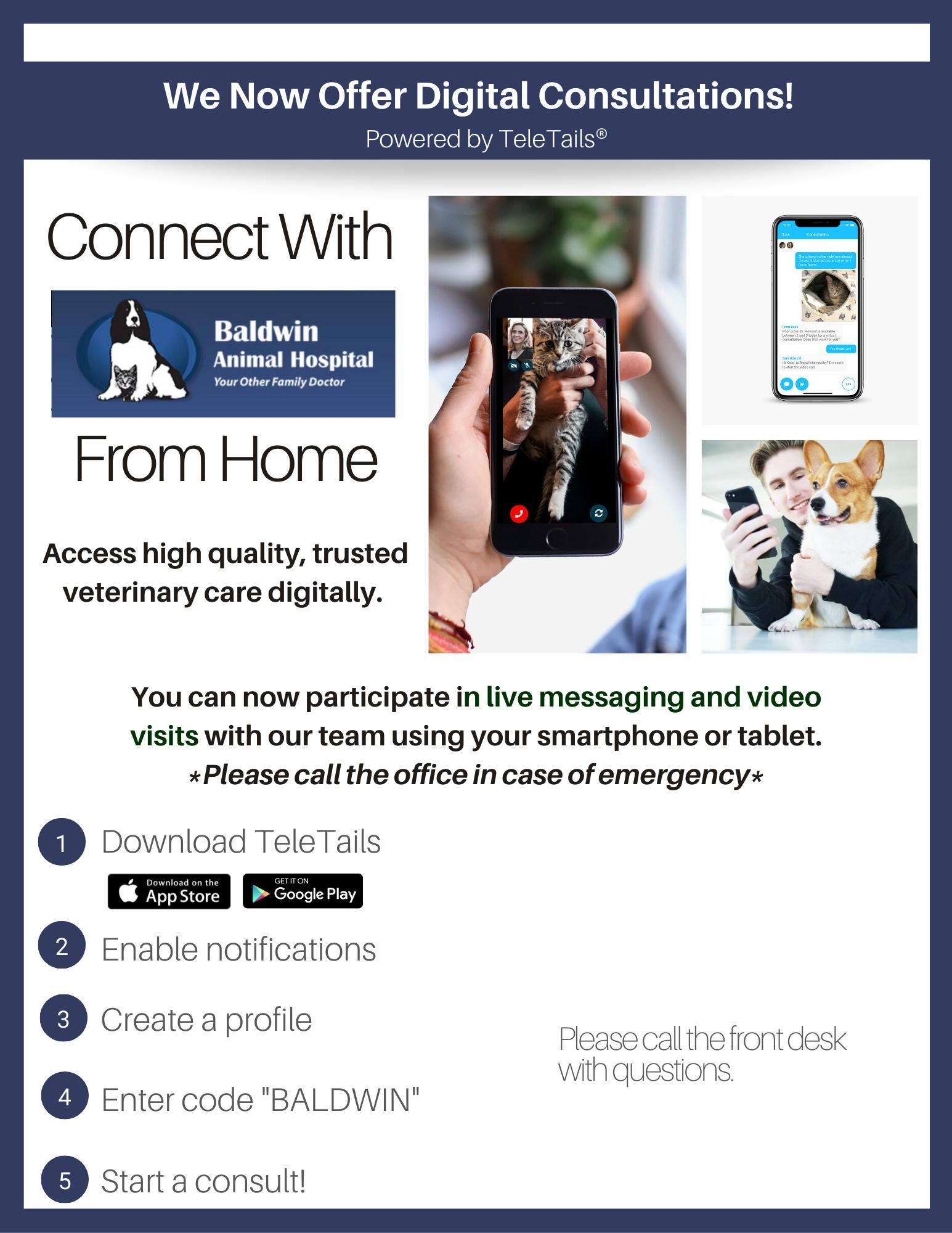 TeleTails Virtual Veterinary Care