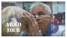 Baldwin Animal Hospital